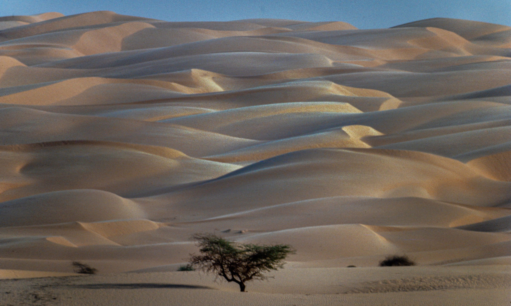 Dunes du Trarza (Mauritanie) © Jacques BOUBY