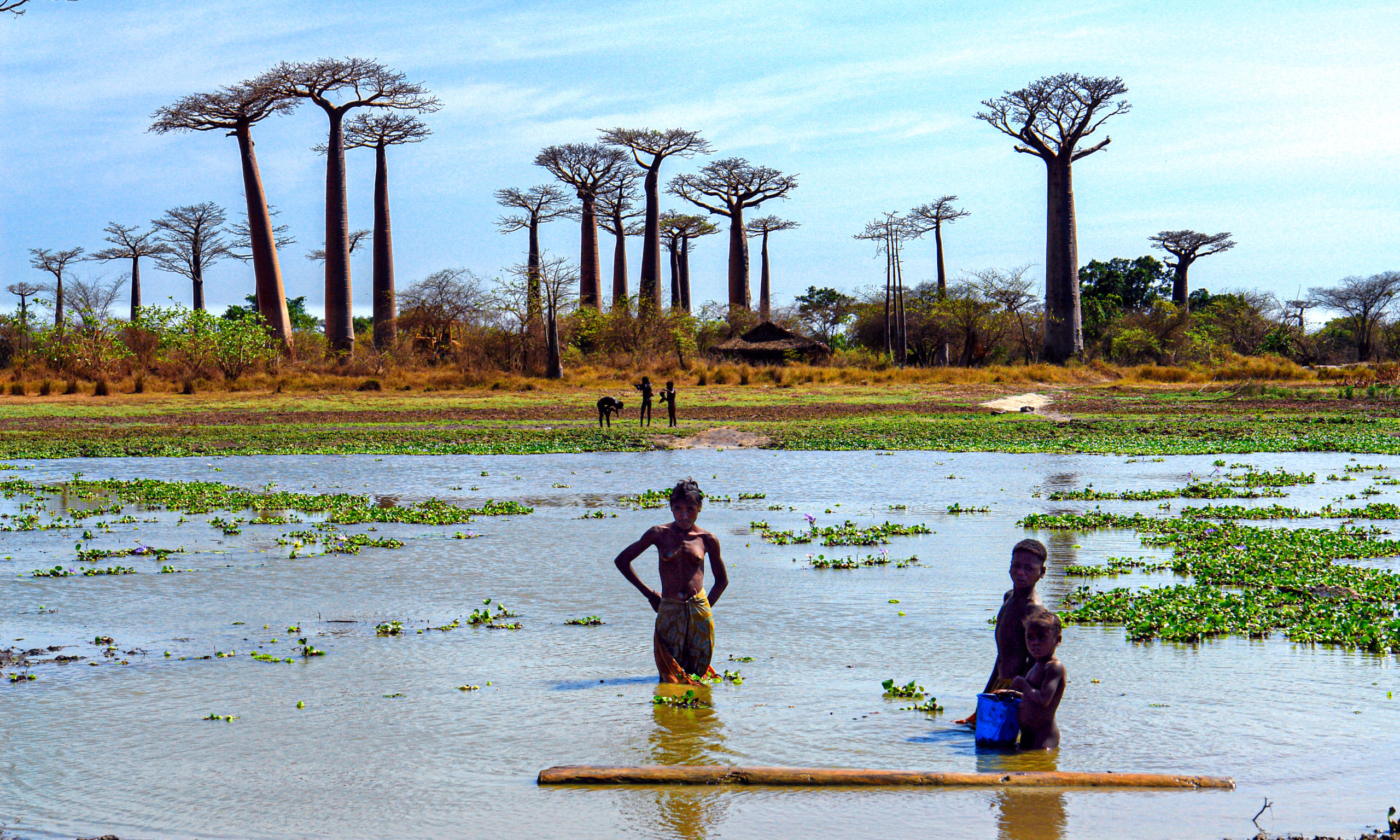 Madagascar-CC BY-NC Jacques BOUBY